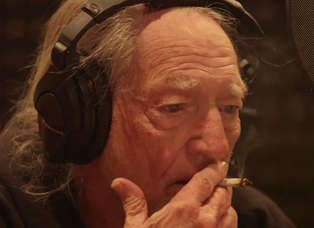 Willie Nelson - 'It's All Going to Pot'