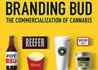 Five Questions with 'Branding Bud' Author David Paleschuck