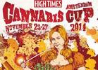 Tommy Chong Makes Surprise Appearance at Cannabis Cup