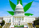 House of Reps Schedules MORE Act Marijuana Decrim Vote