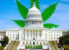 House of Reps Schedules MORE Act Marijuana Decrim Vote
