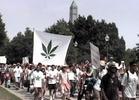 DC Bans Pot Clubs, Activists Threaten Protest