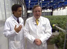 Review: Dr. Sanjay Gupta's 'Weed 2: Cannabis Madness' on CNN (2014)