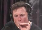 Tesla's Elon Musk Gets Blunted with Joe Rogan
