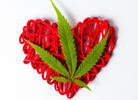 Mixed Messages About Cannabis and Heart Disease