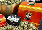 Thank God It's Fryday: Ice Cube Launches Cannabis Brand