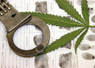 Marijuana Arrests in U.S. Continue to Decline (2012)