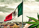 Legalization in Mexico Misses December Deadline, Pushed to Spring 2021
