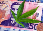 New Zealand Voters Nix Marijuana Legalization Measure