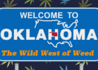 Why Oklahoma's Medical Marijuana Program Works