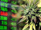 Cannabis Investor Alert: 25 Pot Stocks Worth Watching