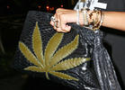 Rihanna's Pot Leaf Pocketbook