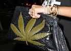 Rihanna's Pot Leaf Pocketbook