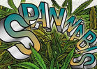 Cannabis Event Cancellations Due to Coronavirus Outbreak