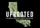 'Uprooted' in California: A New Series from Weedmaps