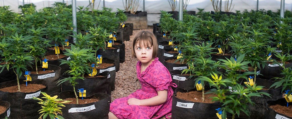 Cannabis Community Devastated by Loss of Charlotte Figi