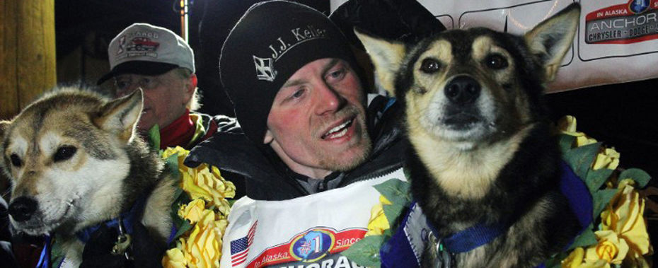 Iditarod Musher Accused of Doping Dogs with Pain Pills